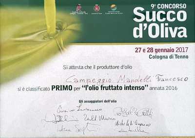 """9° Contest """"Succo d'Oliva"""""""