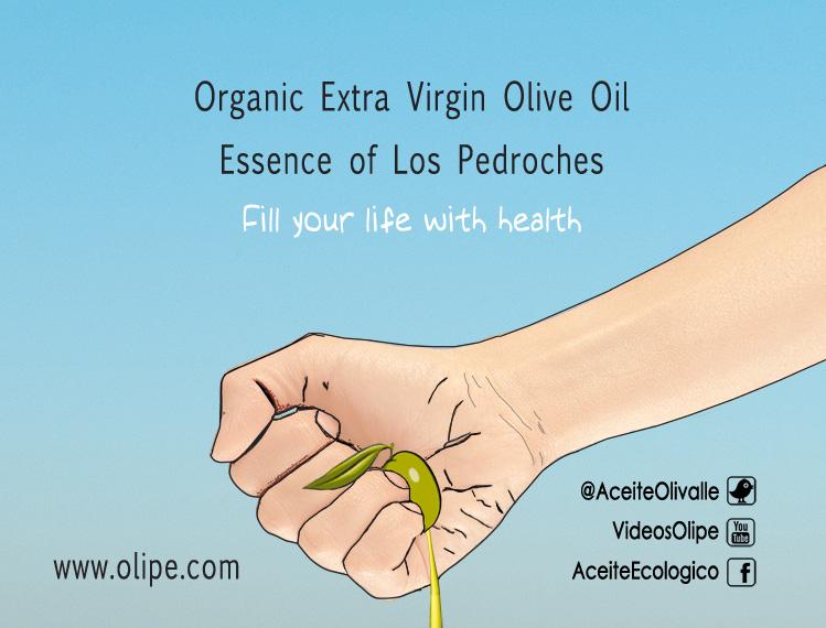 concurso_eslogan_olivarera_los_Pedroche_pozoblanco_aceite_ecologico_finalista_olivar_de_sierra