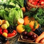frutas verduras aceite ecologico olivar de sierra olipe olivalle olivarera los pedroches