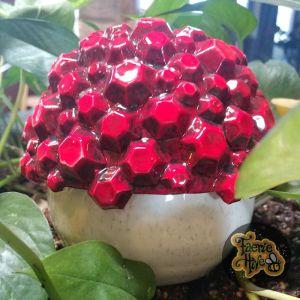 Jeweled Mushroom Box