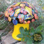 Rainbow Swirl Mushroom Box