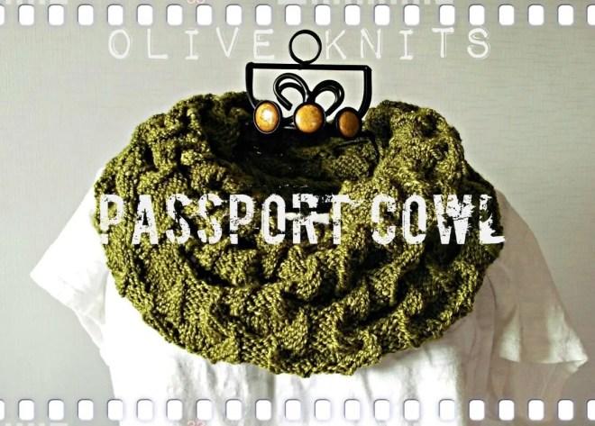 passport cowl8