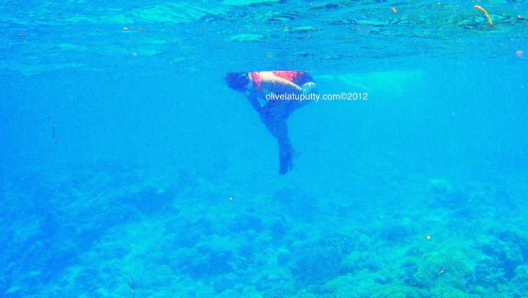 Liburan dan Snorkeling di Gili Trawangan