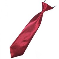 Burnt Red Boys Tie | With Free And Fast UK Delivery