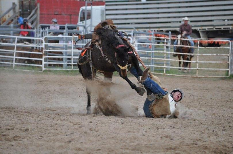 CC0-Public-Domain-Cowboys-Free-Pic-