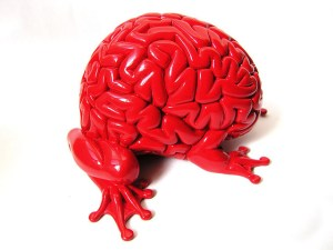 A brain with legs attached - symbolising praxis