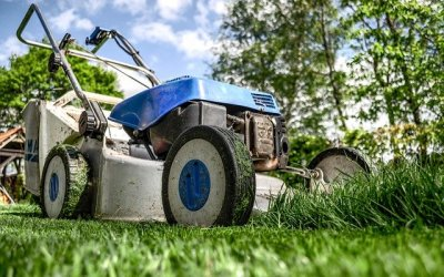 The Important Things to Consider When Choosing a Landscaping Contractor
