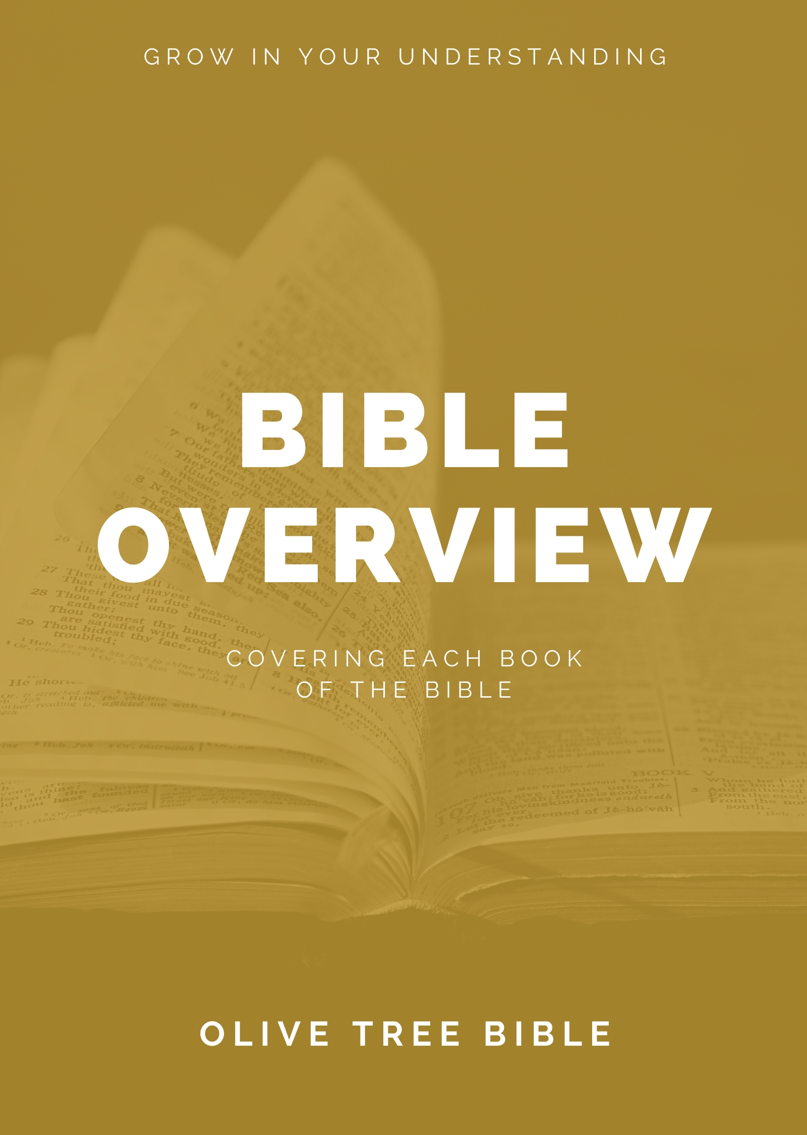 Olive Tree Bible Overview By Olive Tree For The Olive Tree Bible App On IPad IPhone Android