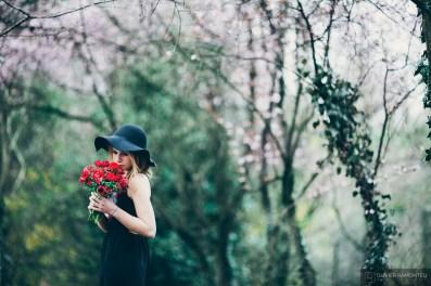 fleurs ambiance