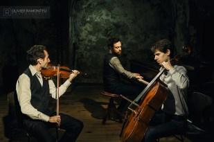 musiciens classiques concert