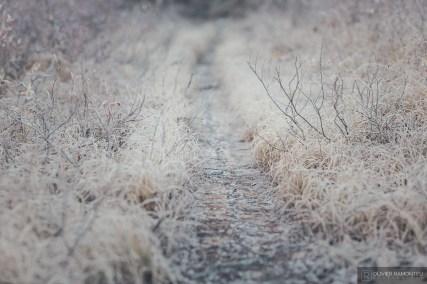 norvege suede voyage photographie roadtrip 2016 10 07816