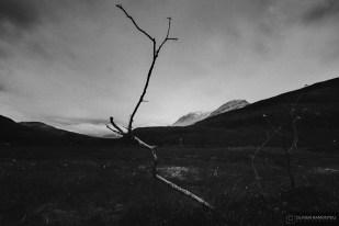 norvege suede voyage photographie roadtrip 2016 10 08301