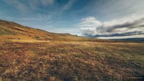 norvege suede voyage photographie roadtrip 2016 10 08318