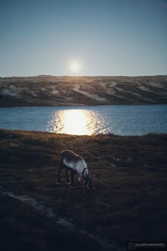 norvege suede voyage photographie roadtrip 2016 10 09346