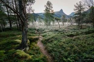 norvege suede voyage photographie roadtrip 2016 10 09433