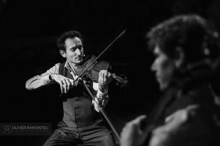 photo violoniste