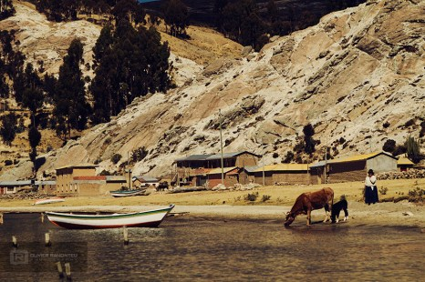 photo-voyage-bolivie-lac-titicaca-isladelsol-2012-07-381-900px