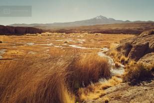 photo-voyage-bolivie-sud-lipez-salar-uyuni-2012-08-084-900px