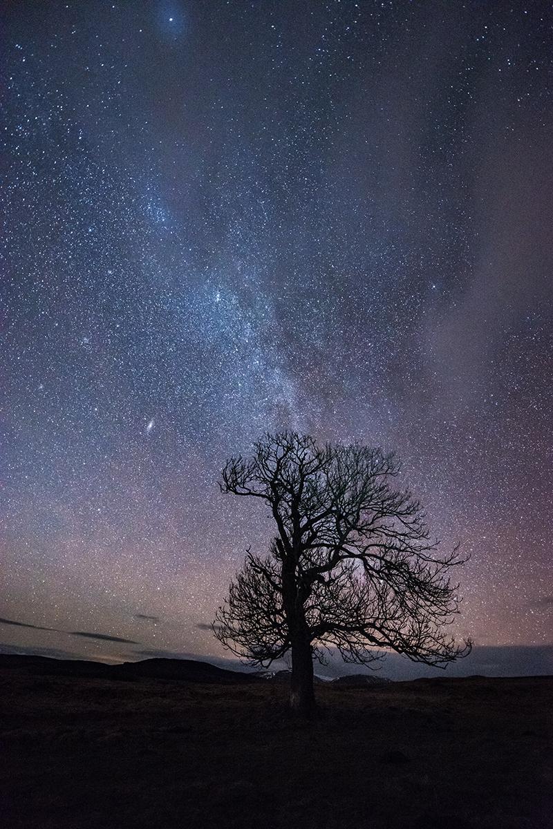 Northern Lights April Iceland