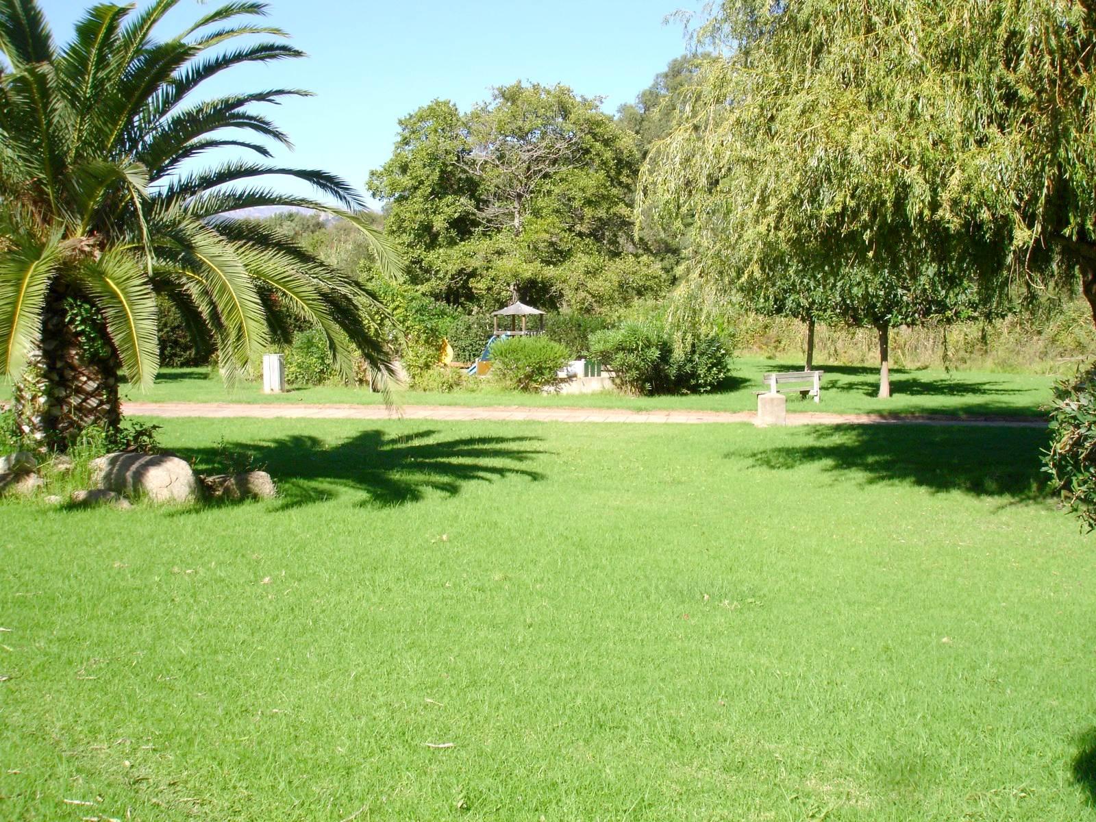 pelouse face terrasse