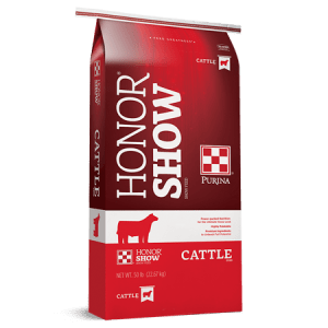 Honor Show Cattle
