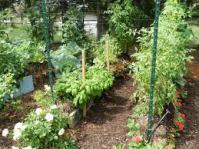 Straw Bale Gardens | Olsen's Grain