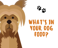 What's in Your Dog Food?