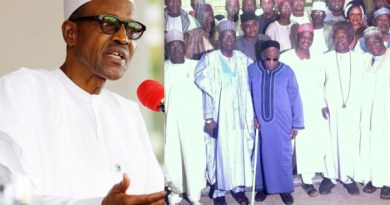Presidency Accuses Northern Leaders, Afenifere & Others Of Shedding Crocodile Tears On Security (pics)