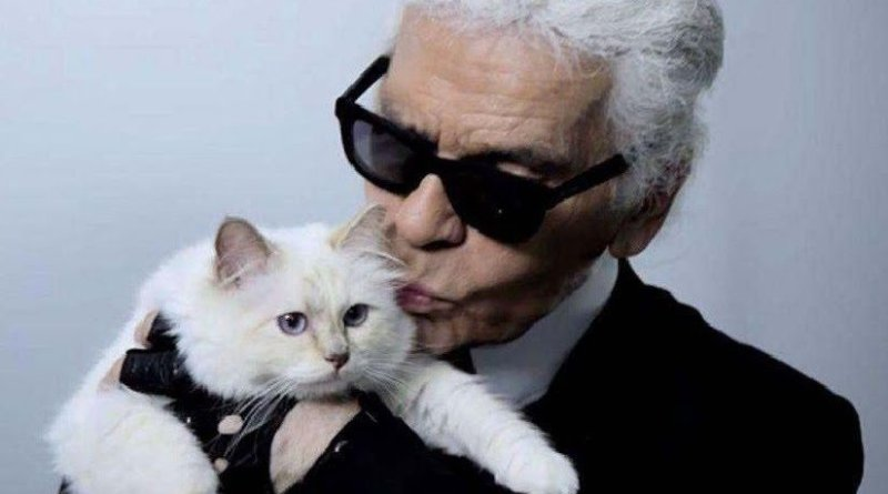 Wonderful! Late Karl Lagerfeld Left Some Of His $200M Fortune To His Cat Choupette (pics)