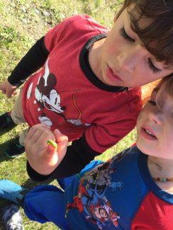 Boys looking at a caterpillar