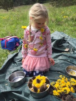 Child with dandelions and pine cones