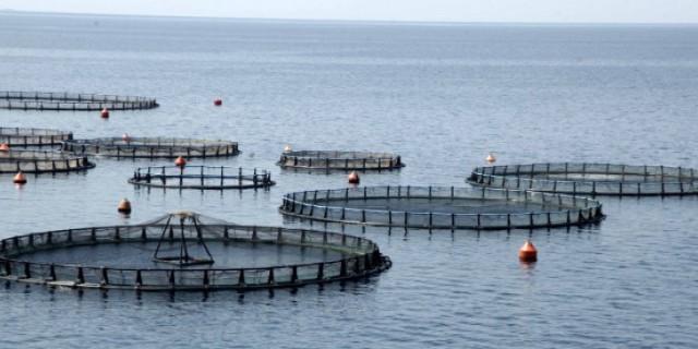 Απαγόρευση αλιείας στα εσωτερικά ύδατα του Νομού Πιερίας έως 2 Ιουνίου