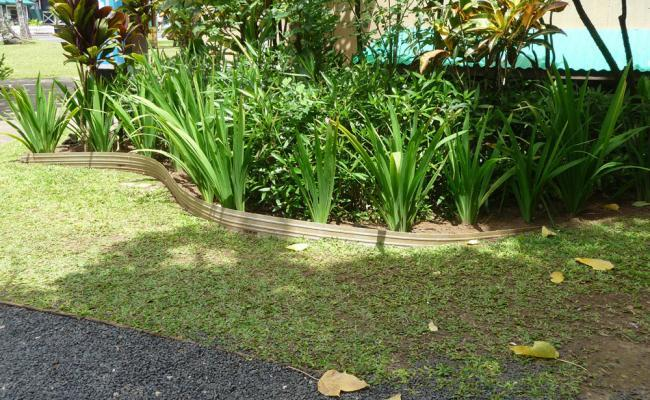 lawn-edging-mistakes027
