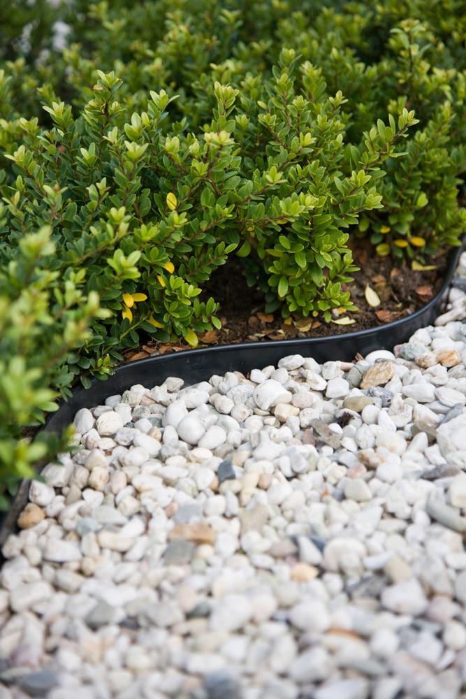 Netherlands Lowprofile  Landscape Edging Lawn Edging
