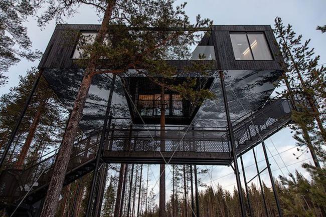 7th Room, casa na árvore