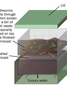 Figure is  schematic showing two fine meshed cubic shaped containers one positioned also vermicasting or vermicomposting processing organic wastes through rh omafra on