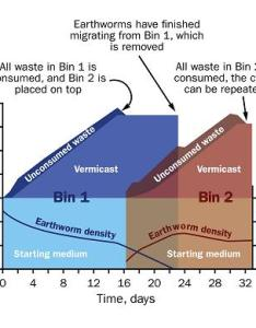 Figure is  graph showing how two bin vermicasting system for your household organic also or vermicomposting processing wastes through rh omafra on