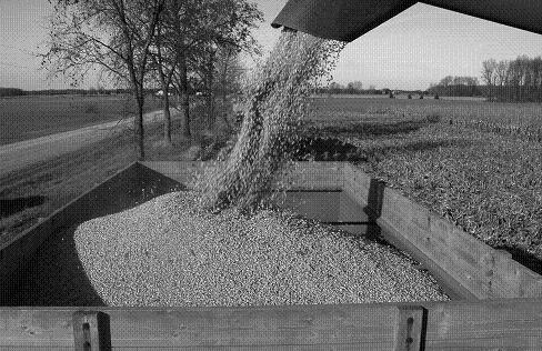 Burning Shelled Corn as a Heating Fuel