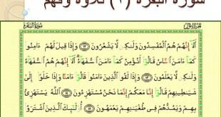 شرح درس سورة البقرة تلاوة وفهم تربية اسلامية للصف السابع الفصل الاول