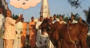 شرح درس خطورة الشرك بالله تربية اسلامية للصف الثامن الفصل الاول