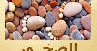 شرح درس الصخور للصف العاشر مادة الدراسات الاجتماعية