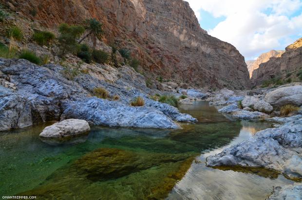 Wadi Al Arbaeen (7)