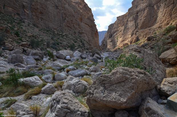 Wadi Al Arbaeen (9)