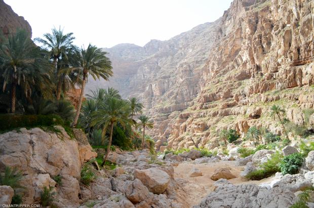 wadi-shab-4