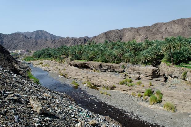 Wadi Dima (1)