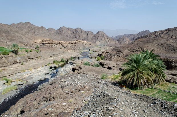 Wadi Dima (2)