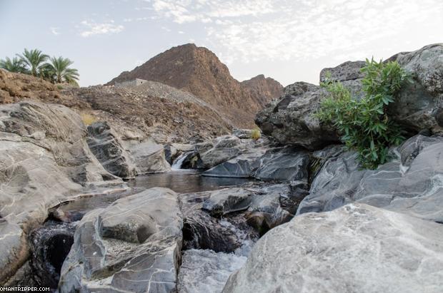 Wadi Dima (4)