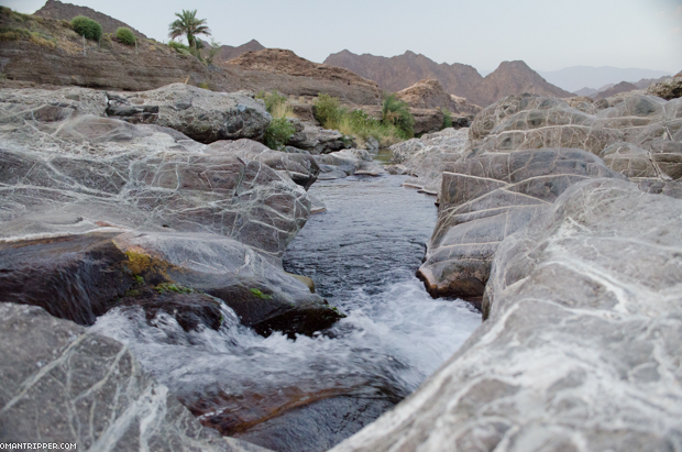 Wadi Dima (7)