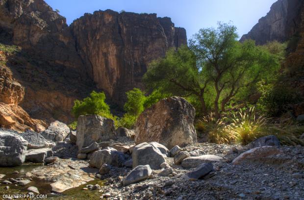 Wadi Bani Awuf (7)