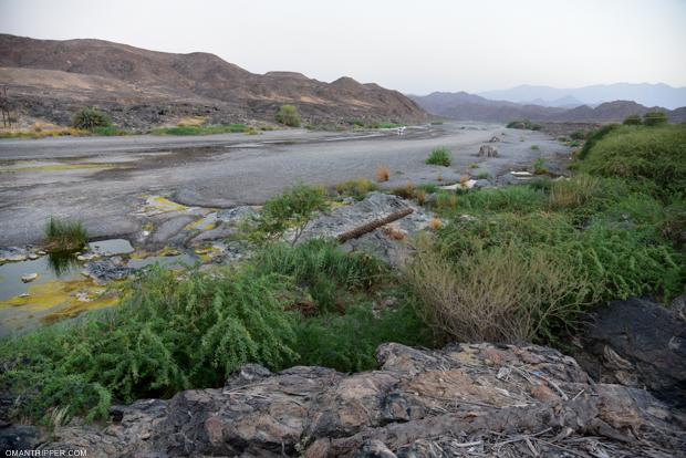 Wadi Al Khoudh (8)